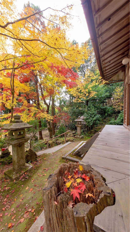 f:id:Shotetsuan:20181130192843j:image