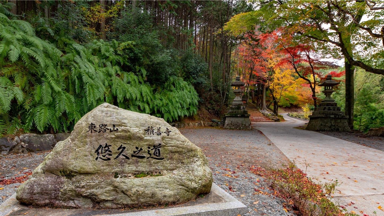 f:id:Shotetsuan:20181207224935j:image