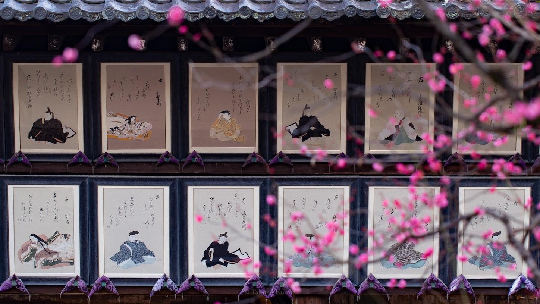 f:id:Shotetsuan:20190113194124j:image