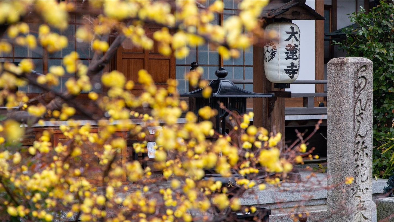 f:id:Shotetsuan:20190122080219j:image
