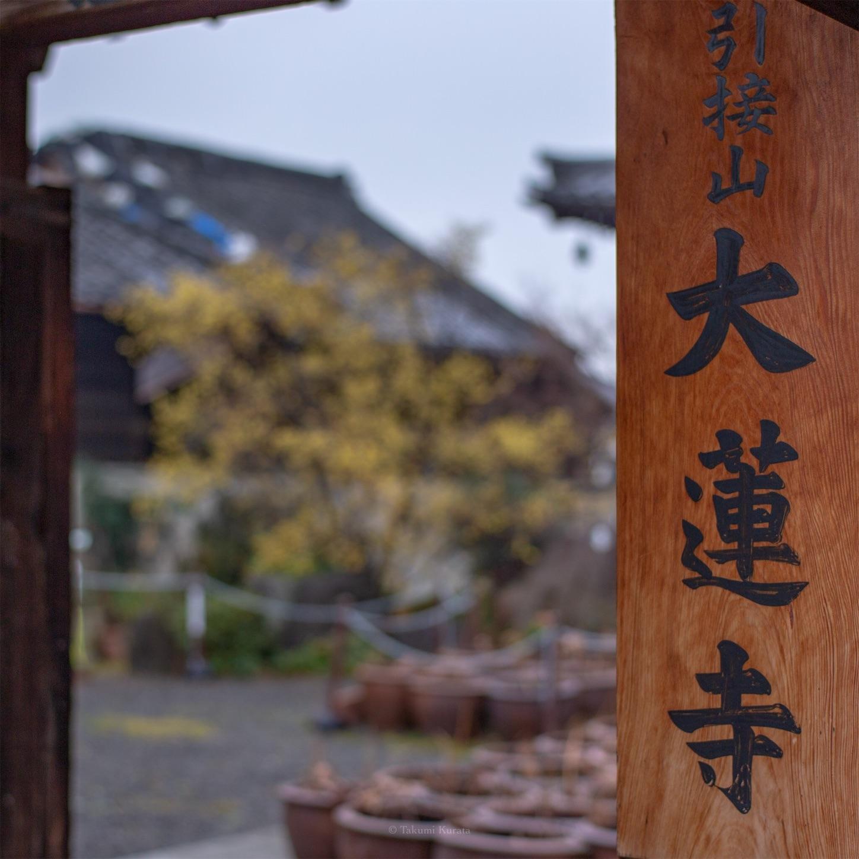 f:id:Shotetsuan:20190122080344j:image