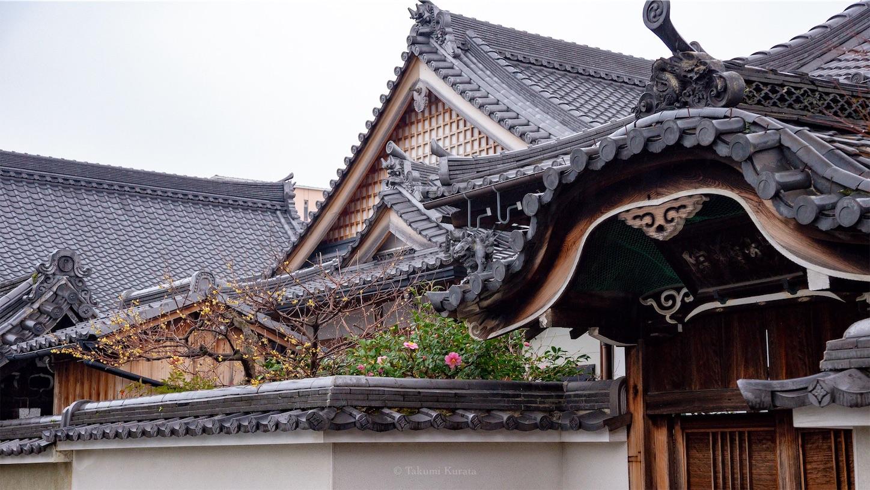 f:id:Shotetsuan:20190123223513j:image