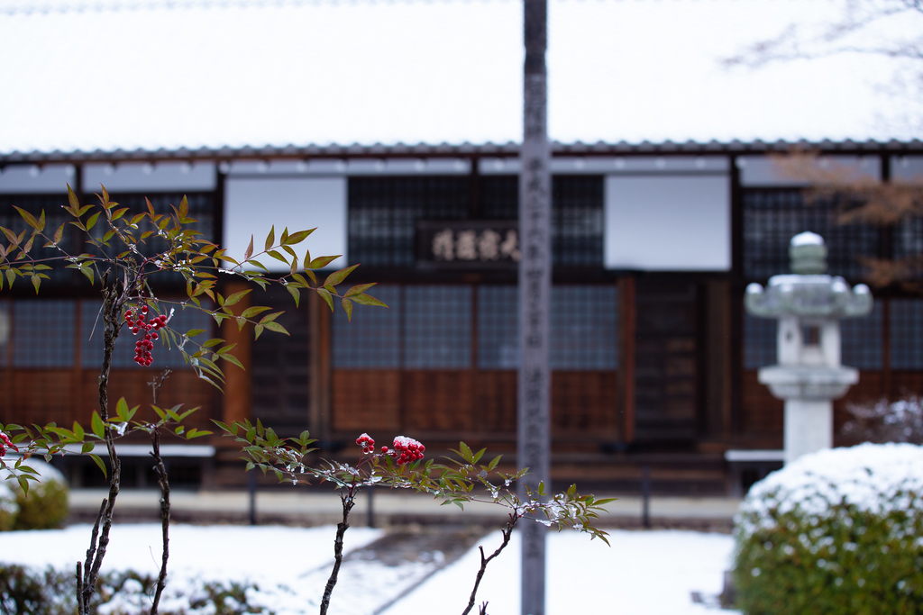 f:id:Shotetsuan:20190129005500j:plain