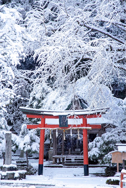 f:id:Shotetsuan:20190131204851j:image
