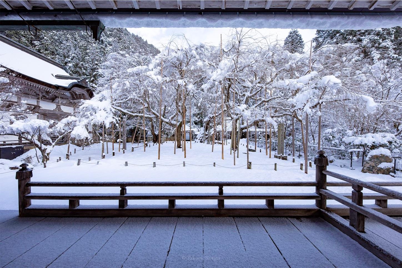 f:id:Shotetsuan:20190202072930j:image