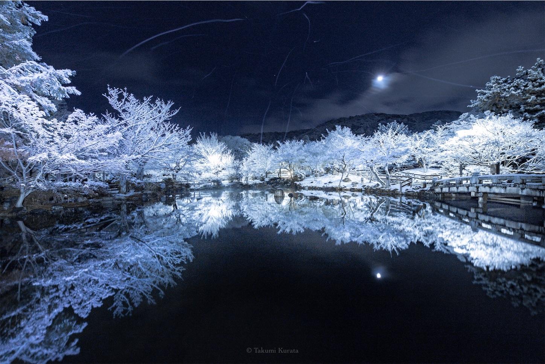 f:id:Shotetsuan:20190225080343j:image
