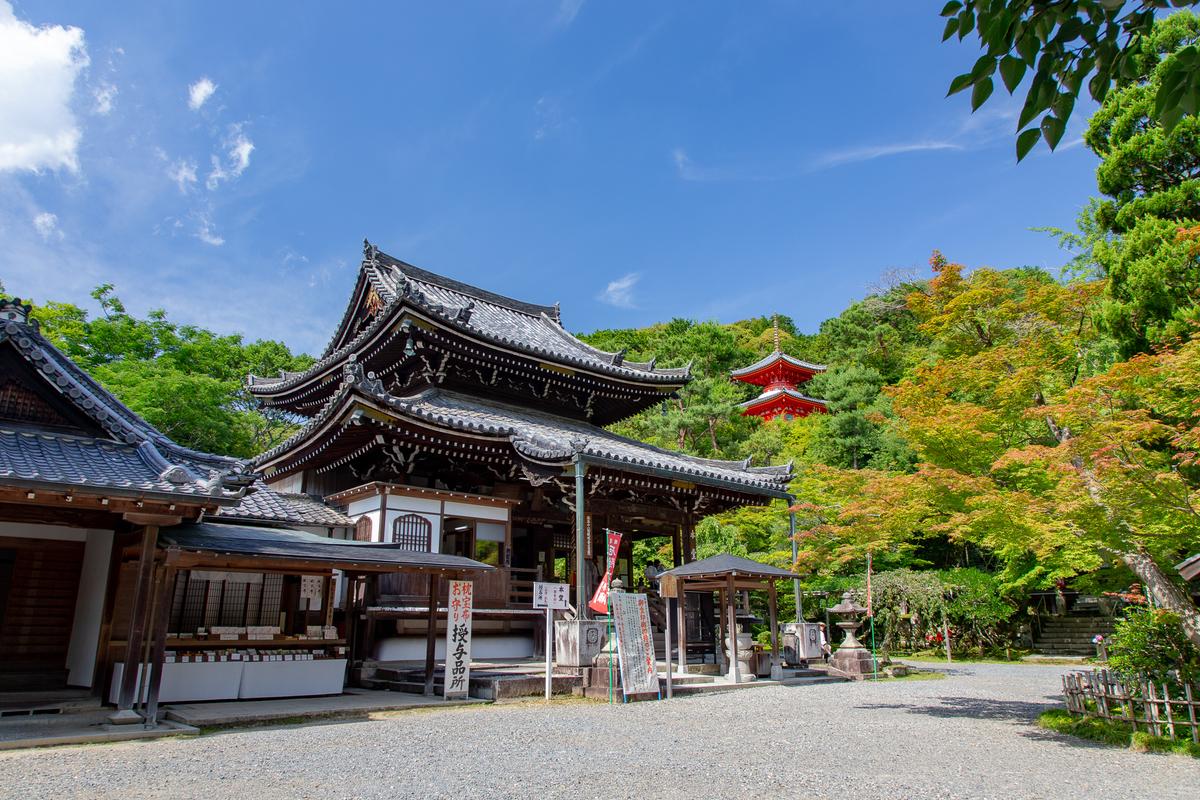 f:id:Shotetsuan:20190505081105j:plain