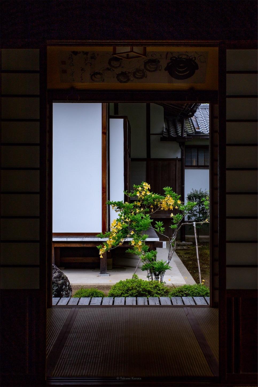 f:id:Shotetsuan:20190518201411j:plain