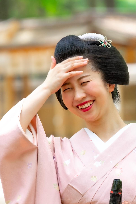 f:id:Shotetsuan:20190526202406j:plain