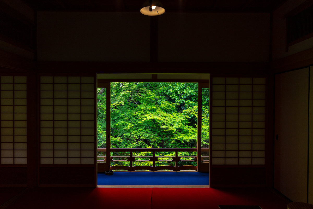 f:id:Shotetsuan:20190614081935j:plain