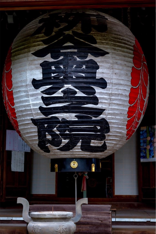 f:id:Shotetsuan:20190616185253j:plain