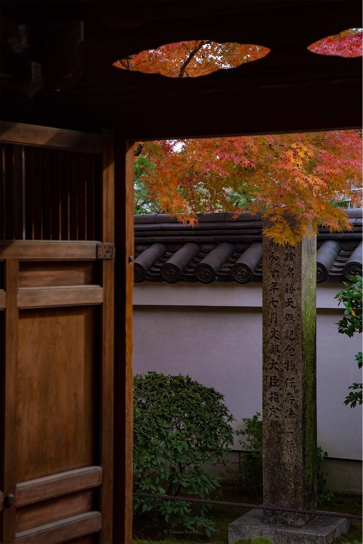 f:id:Shotetsuan:20190620134701j:plain