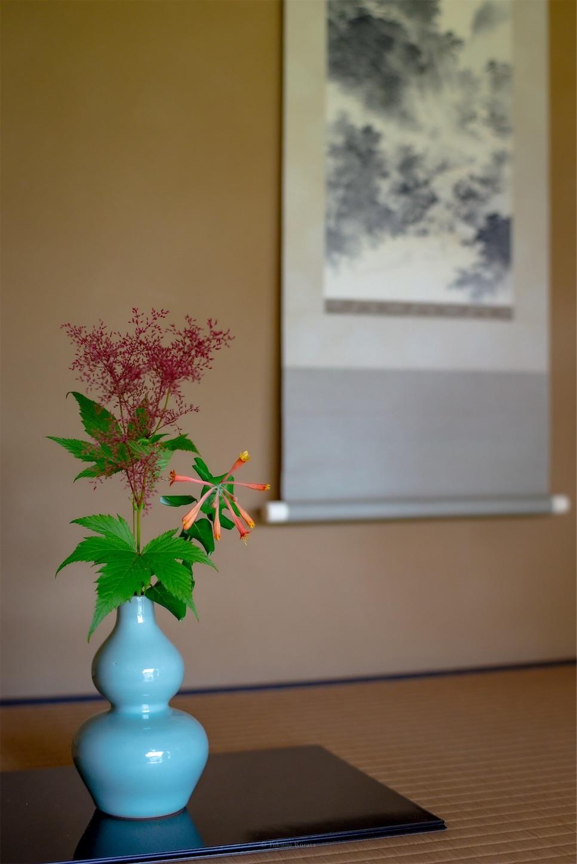 f:id:Shotetsuan:20190624014213j:plain