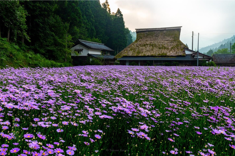 f:id:Shotetsuan:20190810110114j:plain