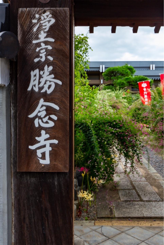 f:id:Shotetsuan:20190920195740j:plain