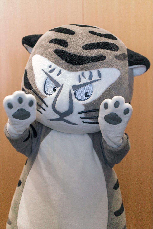 f:id:Shotetsuan:20190921075553j:plain
