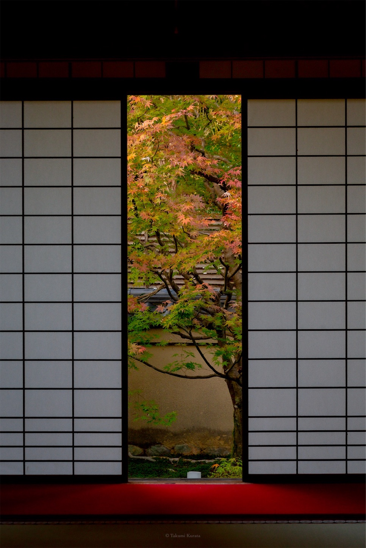 f:id:Shotetsuan:20191117205741j:plain
