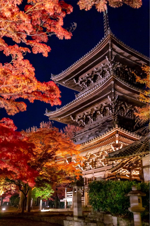 f:id:Shotetsuan:20191210083410j:image