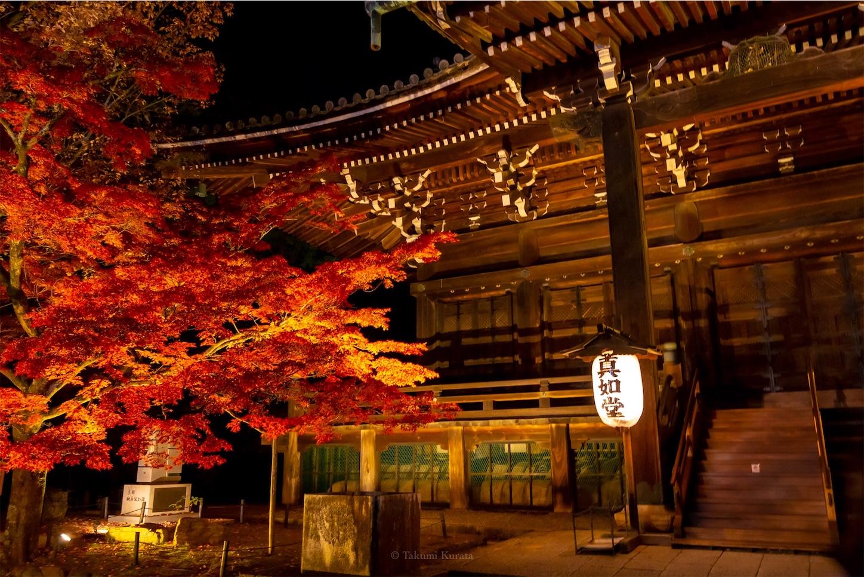 f:id:Shotetsuan:20191210083434j:image