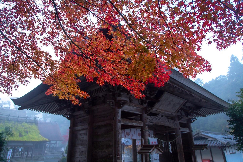 f:id:Shotetsuan:20200225123946j:image