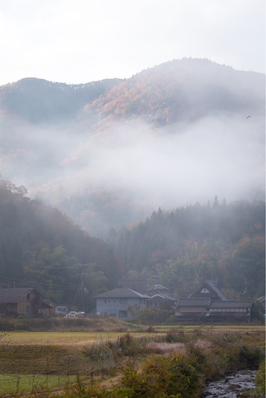f:id:Shotetsuan:20200225142711j:plain