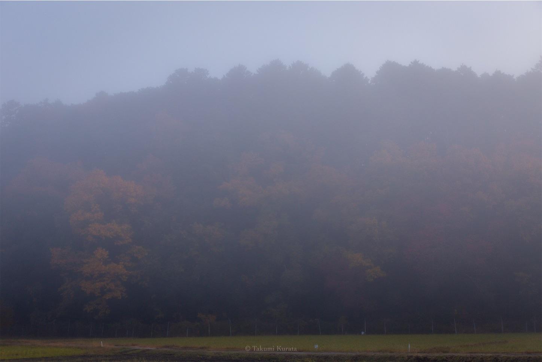 f:id:Shotetsuan:20200225142833j:image