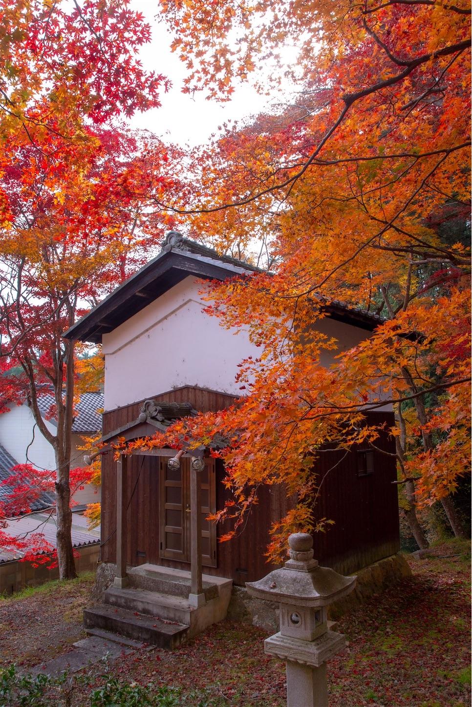 f:id:Shotetsuan:20200302074115j:image