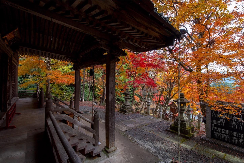 f:id:Shotetsuan:20200302074129j:image