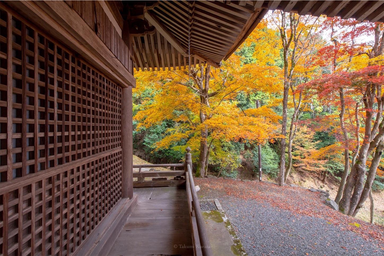 f:id:Shotetsuan:20200302074133j:image