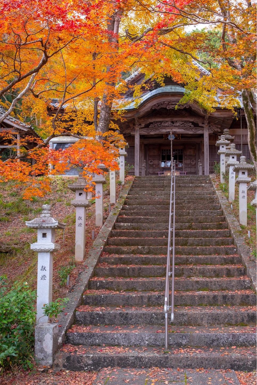 f:id:Shotetsuan:20200302074139j:image