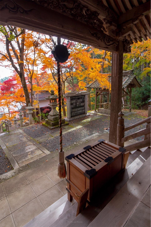 f:id:Shotetsuan:20200302074147j:image