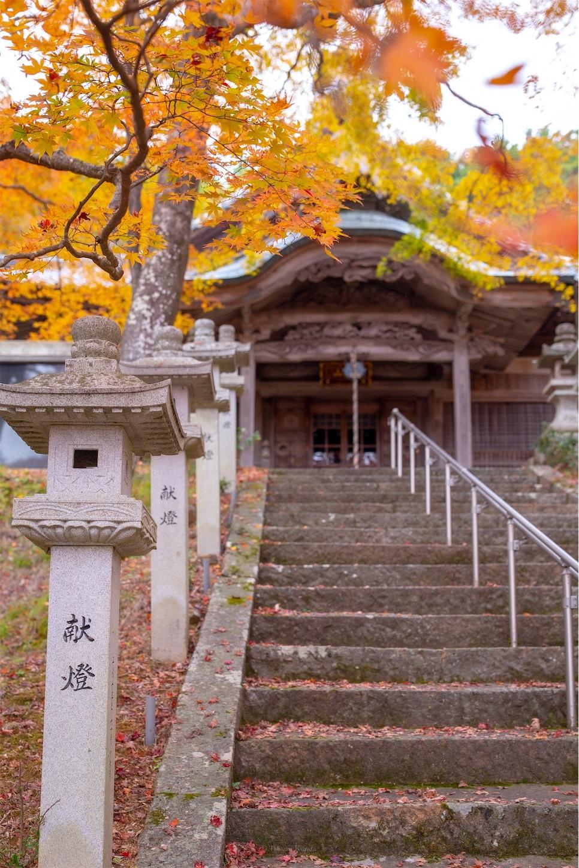 f:id:Shotetsuan:20200302074151j:image
