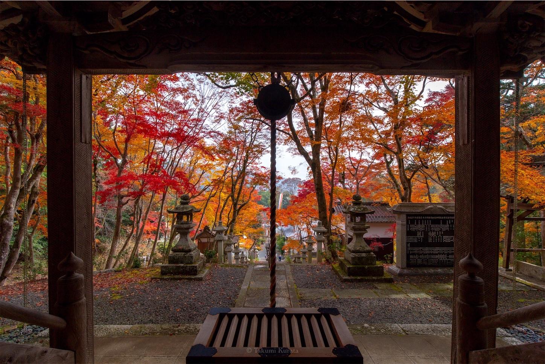 f:id:Shotetsuan:20200302074201j:image