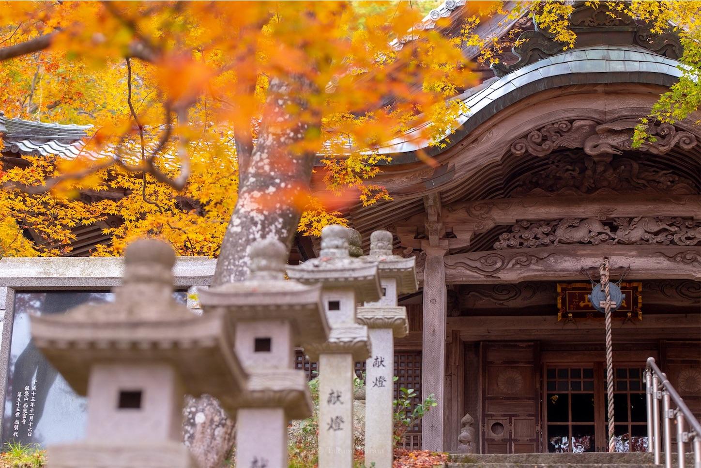 f:id:Shotetsuan:20200302074226j:image
