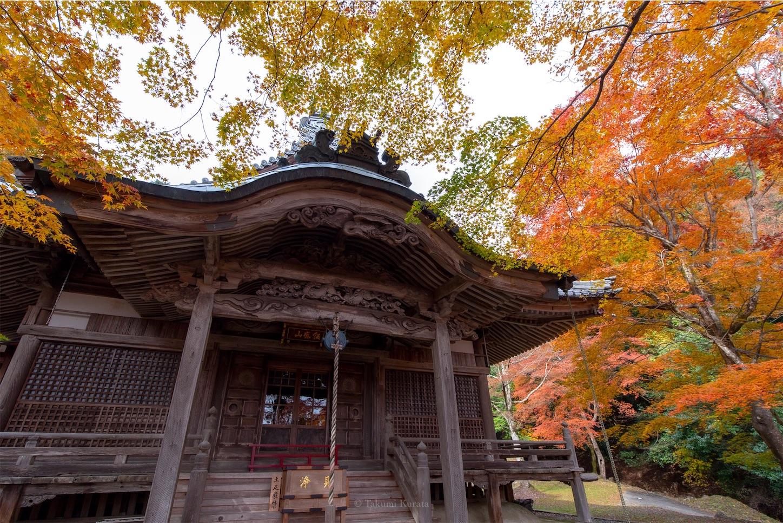 f:id:Shotetsuan:20200302074236j:image