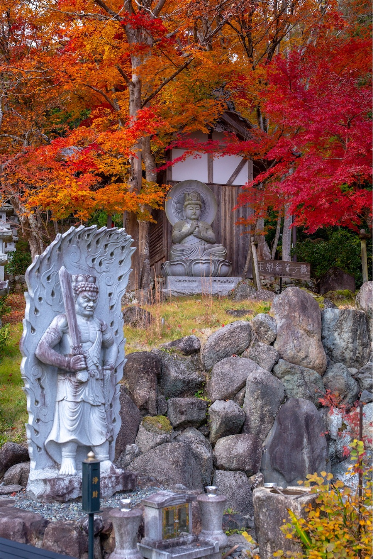 f:id:Shotetsuan:20200302074240j:image