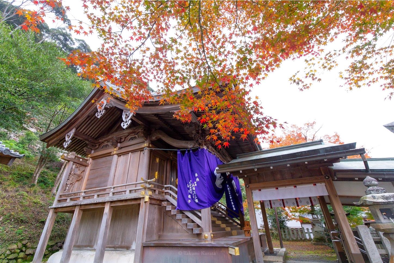 f:id:Shotetsuan:20200302074816j:image