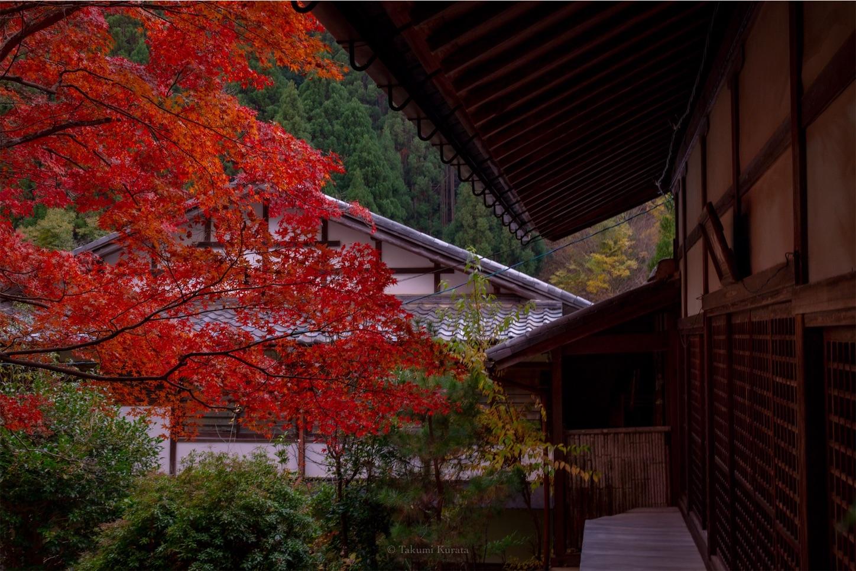 f:id:Shotetsuan:20200302075532j:image