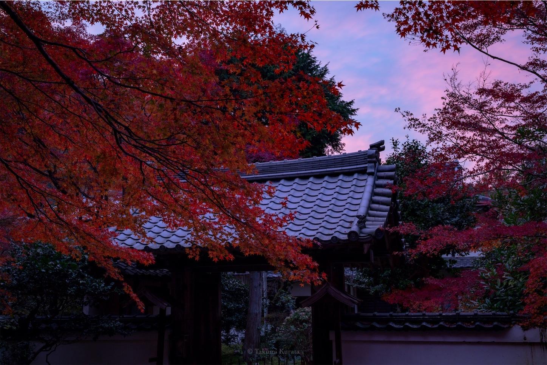 f:id:Shotetsuan:20200302075537j:image
