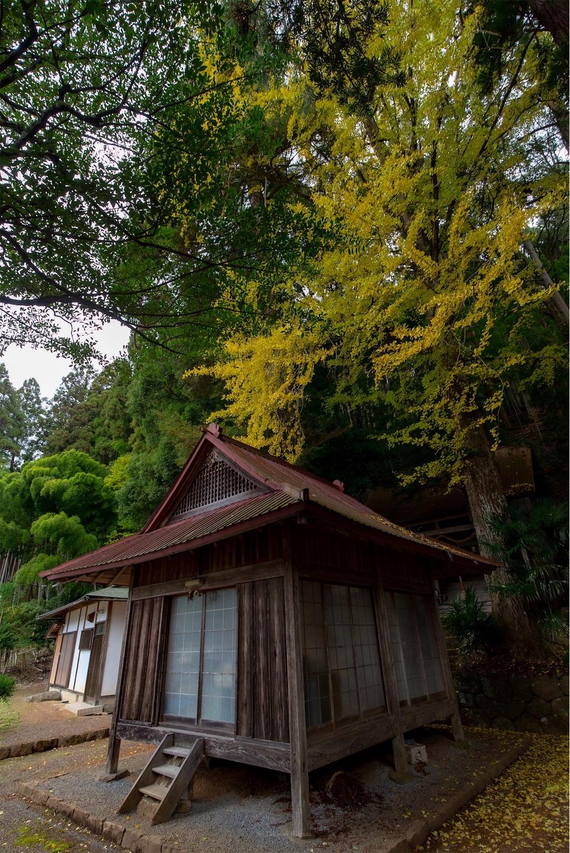 f:id:Shotetsuan:20200302172340j:image