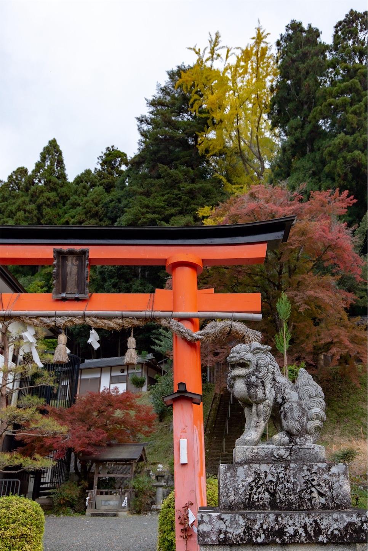 f:id:Shotetsuan:20200302172346j:image