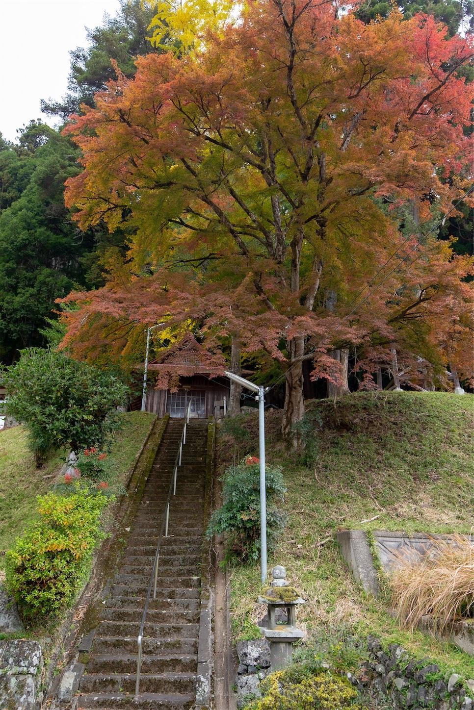 f:id:Shotetsuan:20200302172352j:image