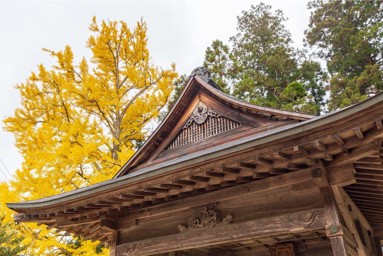 f:id:Shotetsuan:20200302172518j:image