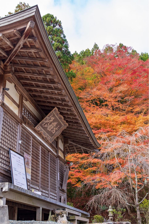 f:id:Shotetsuan:20200302172701j:image