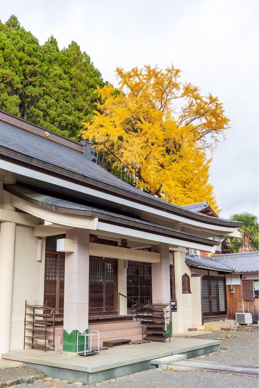 f:id:Shotetsuan:20200302172705j:image