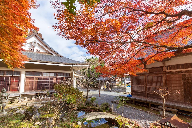 f:id:Shotetsuan:20200302172719j:image