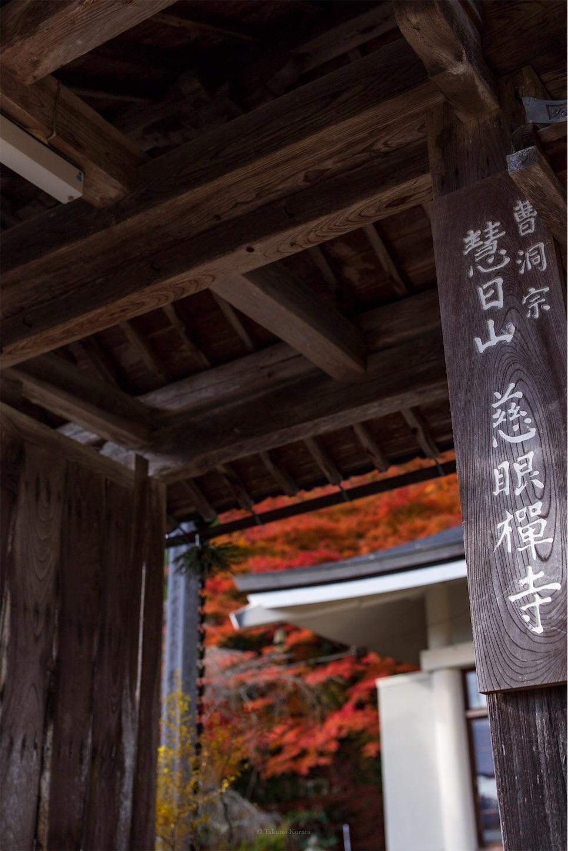 f:id:Shotetsuan:20200302172730j:image