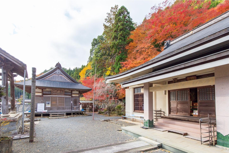 f:id:Shotetsuan:20200302172739j:image
