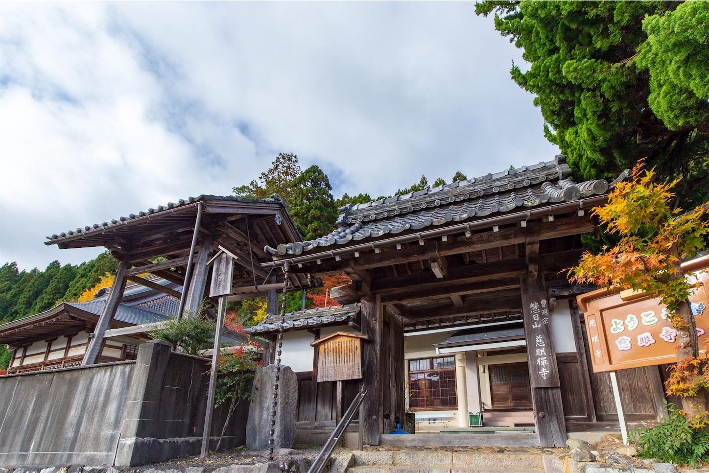 f:id:Shotetsuan:20200302172757j:image