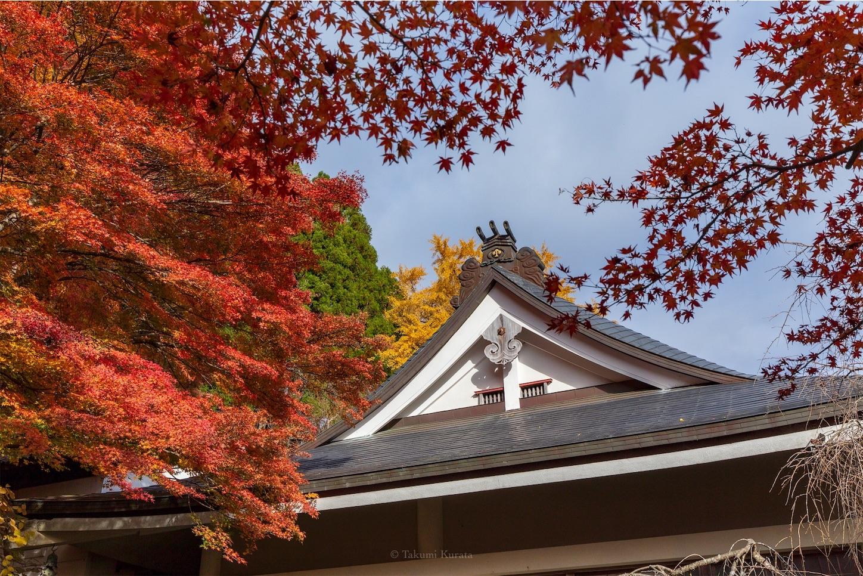 f:id:Shotetsuan:20200302172801j:image